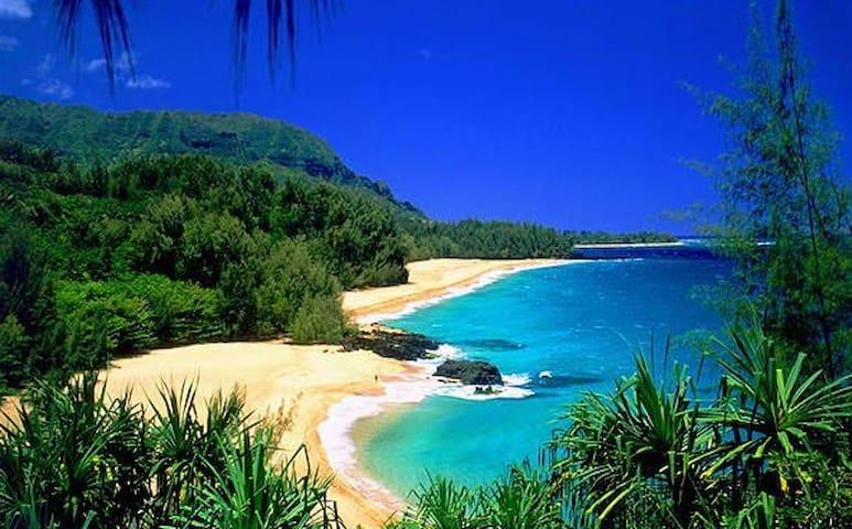 1 BR condo, Princeville, Kauai