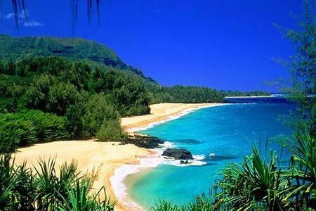 1 BR condo, Princeville, Kauai - Princeville - Apartment