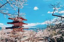 富士浅間神社 車で約21分 Fuji Asama shrine by car 21 min  新仓富士浅间神社 行车21分钟