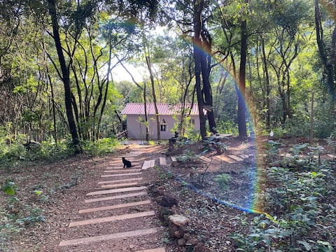 Bangalô Canto da Cachoeira