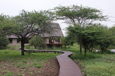 Royal Jozini's Siqalo Lodge - Hippo bedroom