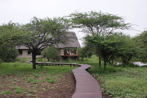 Royal Jozini's Siqalo Lodge - Hippo bedroom