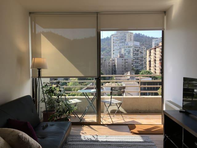 Cómodo y Acogedor Apartamento en Providencia