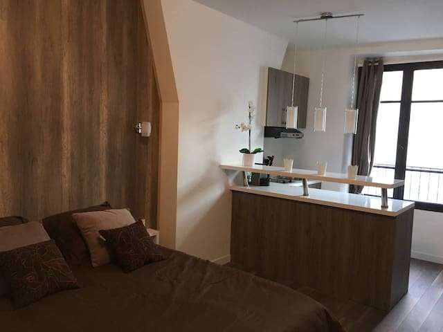 Charming new studio near Eiffel Tower (G36)