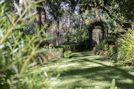 Garden Retreat, Darlington - Darlington - Ev