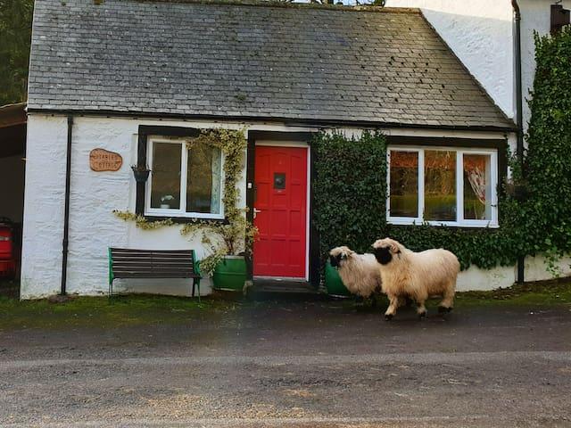 Stables Cottage, Eskdalemuir - a tranquil retreat