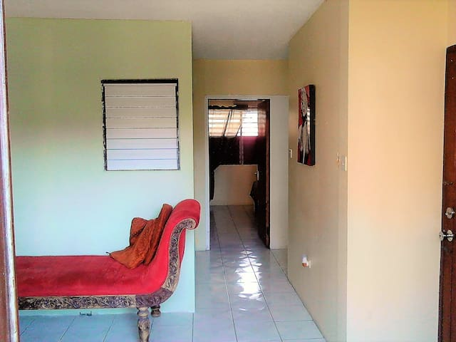 Cozy, homey, central, New Kgn/24 hour security - Kingston - Apartamento
