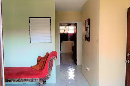 Cozy, homey, central, New Kgn/24 hour security - Kingston - Apartament