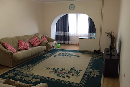 Clean, bright and comfortable appartment! - Bishkek