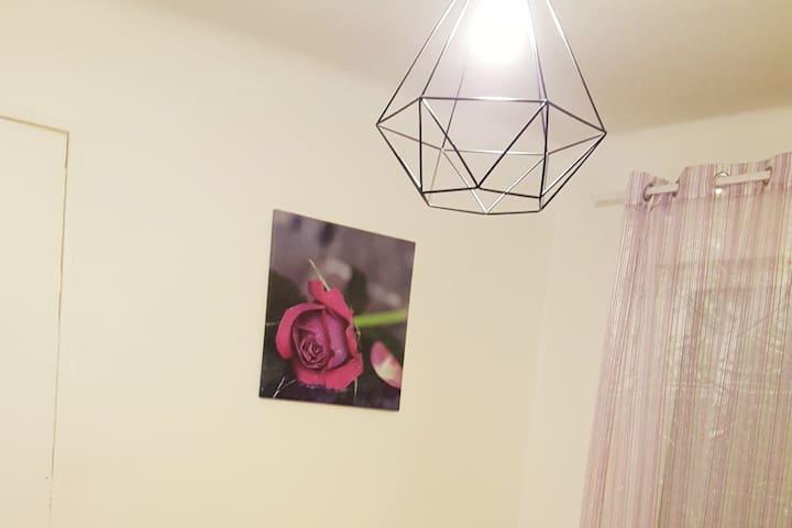 """Chambre """" La rose"""""""