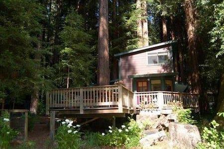 Meadow Creek Cabin - Cazadero - Cabanya