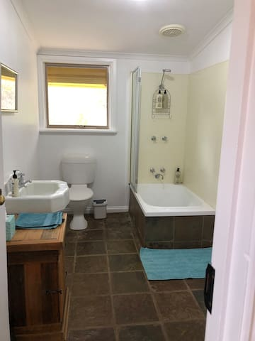 Bathroom with small bath under the shower.
