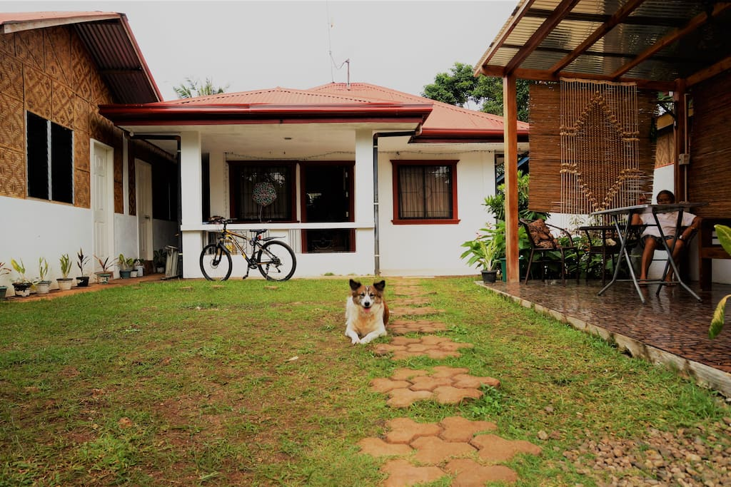 The main garden and common area with Patio and hammock. The center structure is the main house of the owner.  There is 1 resident but friendly dog in the area no need to worry.  As you can see at the left part of the image are the 2 doors intended for Intoy's Backpackers. 2 rooms 1 Female Dormitory room and 1 Male Dormitory room. Each room consist of 3 beds with shared Toilet and Shower equipped with air-conditioning, Wifi access, drawers and complete sleeping and bathroom amenities.