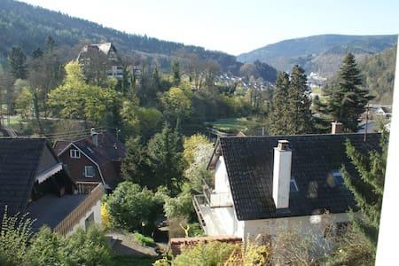 Im schönen Schwarzwald - Gernsbach - Talo