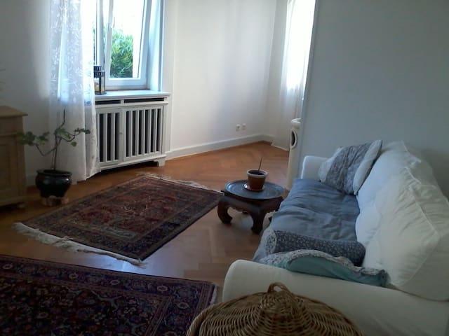großes, schönes Zimmer in Altbau - Emmendingen - Lägenhet