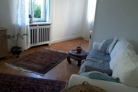 großes, schönes Zimmer in Altbau - Emmendingen - Apartamento