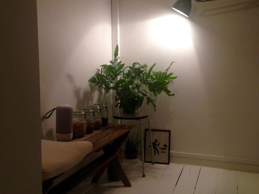 Bohemian & minimalistic styled kitchen