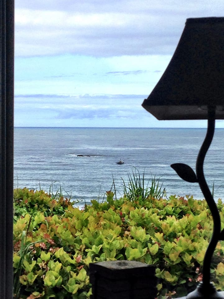 Reading a book overlooking the Ocean.