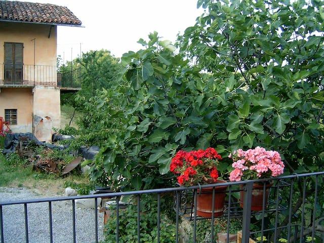 Grande casa nella campagna tra Langhe e Alpi - Villanova Mondovì - Appartement