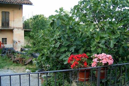 Grande casa nella campagna tra Langhe e Alpi - Villanova Mondovì - Apartemen