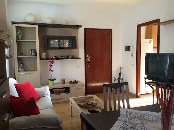 Nice apartment 25 min. to Milan