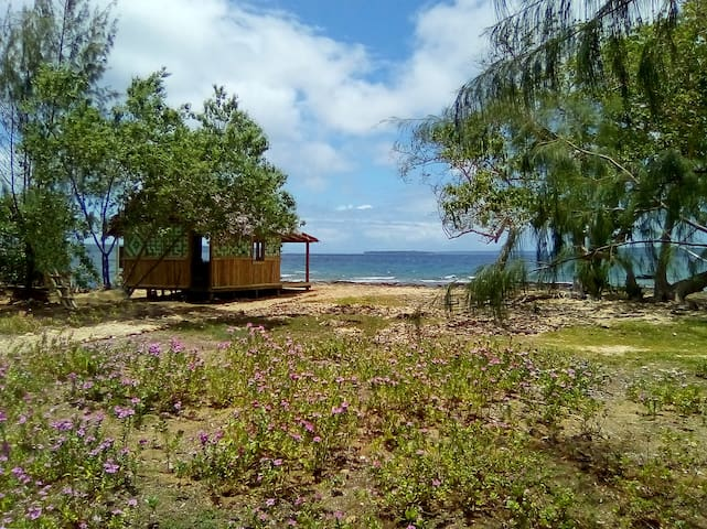 Million Dollar View - Motalava Beach Bungalow