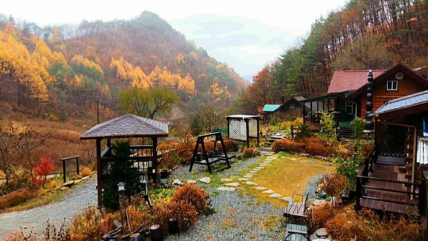 정선통나무집(4인기준/사랑방)