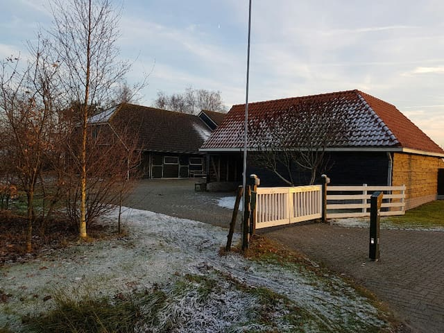 Guesthouse in the countryside - Punthorst - Kondominium