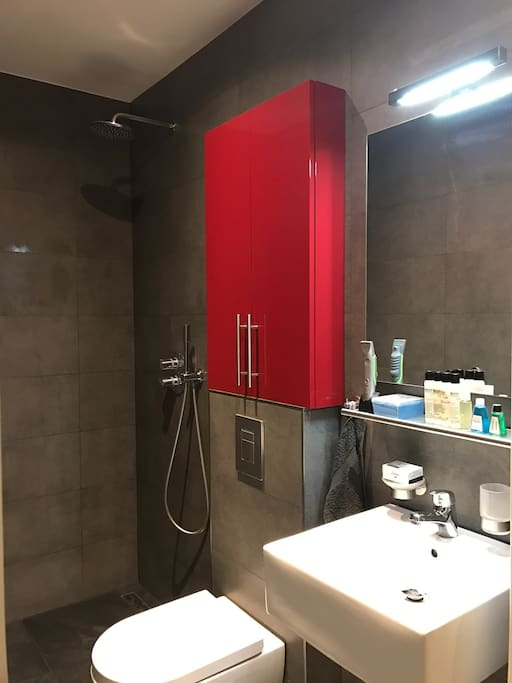 Luxurious bathroom with floor heating, rain shower, lighted mirror, basin and toilet. Shampoo, soap, conditioner, body lotion, body wash and mouth water included. Fresh towels upon request.