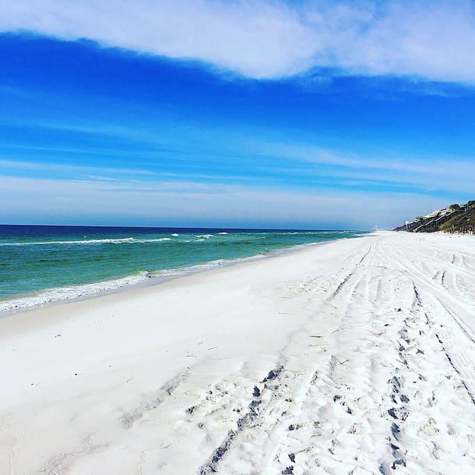 Daily walk on the beach.