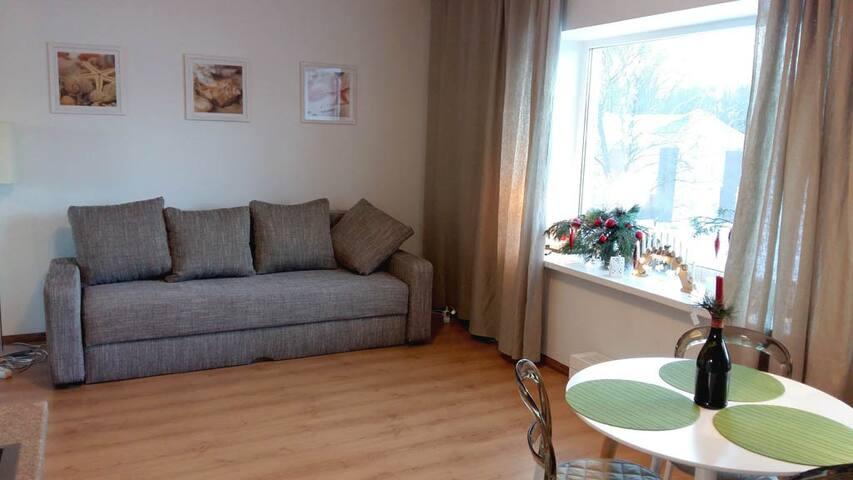 Matisa Studio - Rīga - Apartment