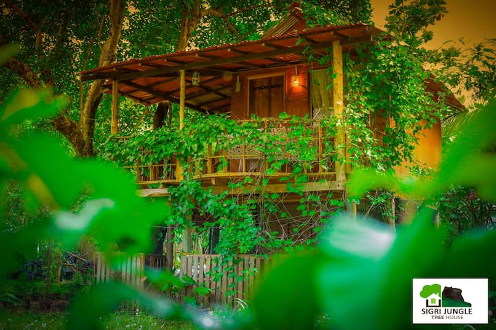 "Sigiri Jungle Tree House B&B "" Nature lovers""!"