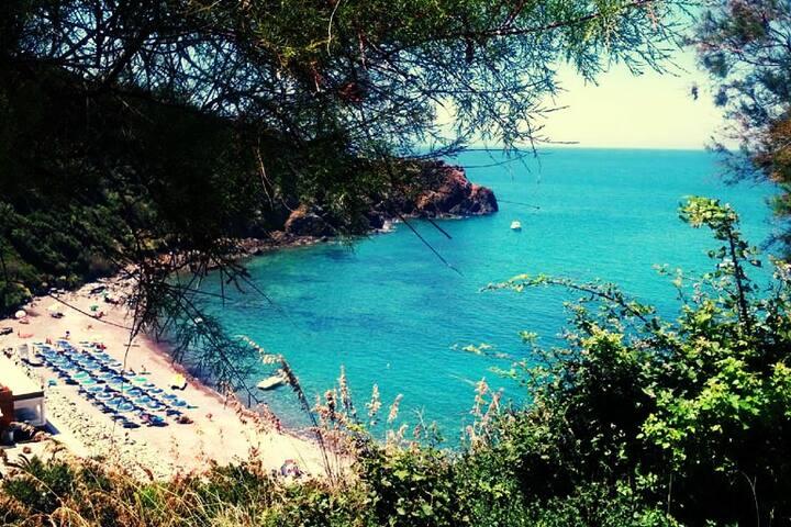 Comodità e bellezza a due passi dal mare. - Piombino - Lägenhet