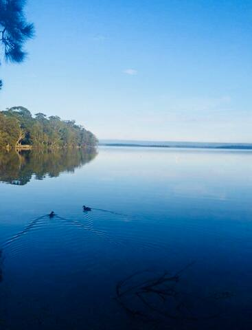 A moments walk across the road to this - waters edge of St George's Basin. Great for kayaking, fishing, boating, explore the bush waking track along the water
