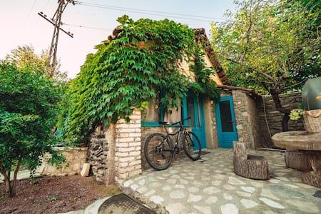 Isev Kvareli-Blue Cottage