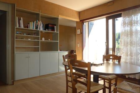 Studio 50 m2 avec balcon orienté plein sud