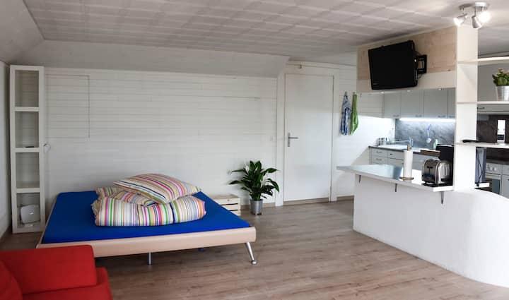 Charming apartment in Weiningen close to Zurich