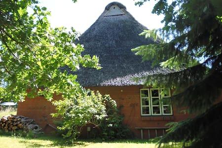Schlafen unterm Reetdach - Schacht-Audorf - Dům
