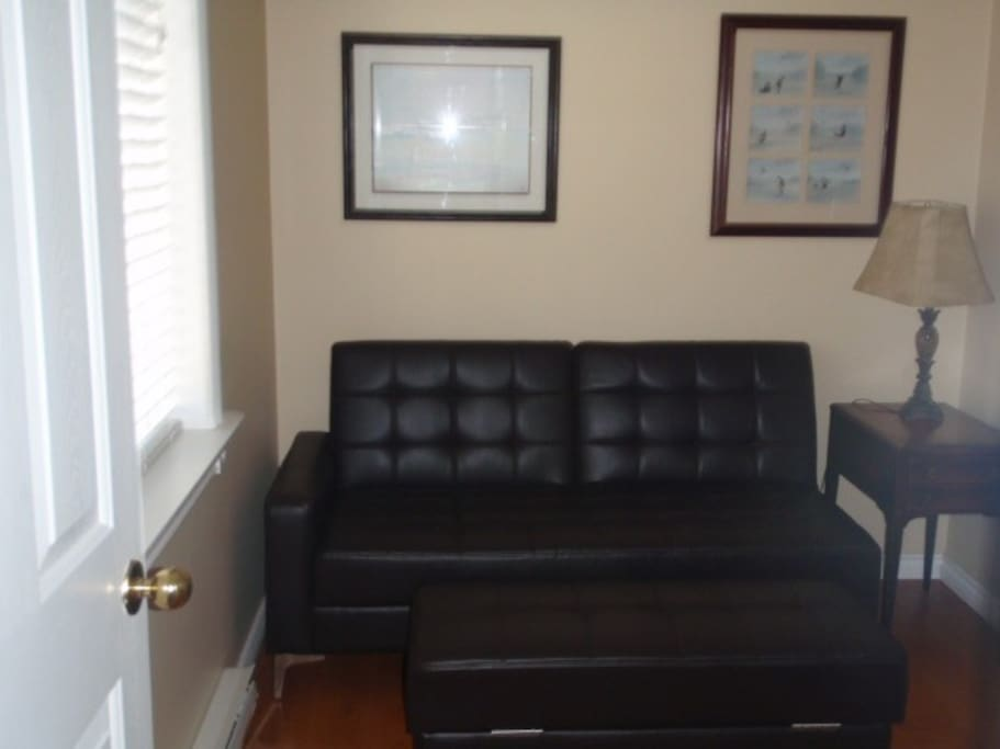 Leather sofa bed sleeper in den