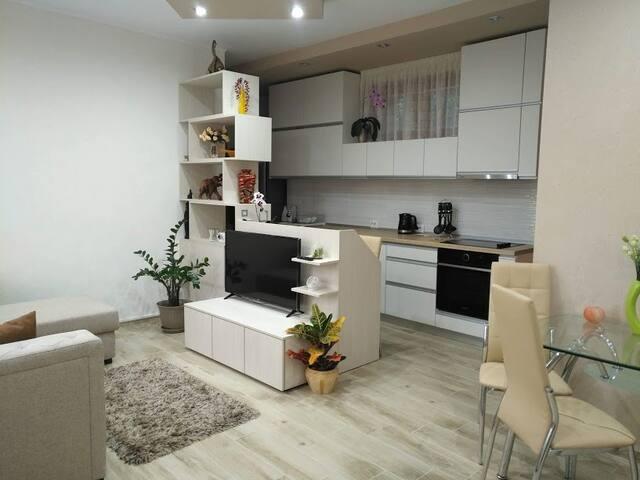 Oradea Nice Apartment