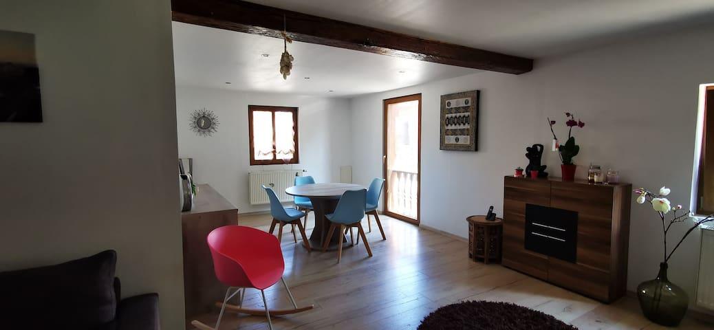 Studio 50m2 et petite cour dans maison alsacienne