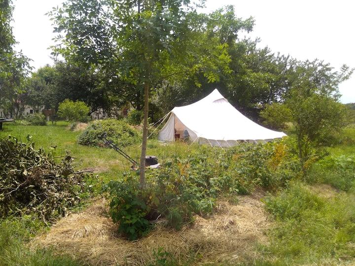 une tente princière dans un lieu de vie collectif