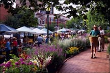 Quick drive or Uber ride to the Local Farmers Market on the downtown square!! 2.8 miles to be exact. See the link below for more information on the Farmers Market location, dates and hours of operation. https://www.fayettevillefarmersmarket.org