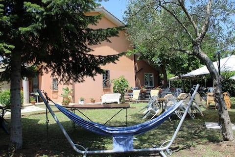 Casa Del Gelso a Trevignano Romano