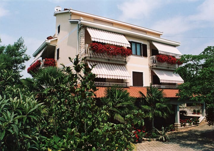 APARTMENTS HOUSE LILLY VABRIGA WITH SEA VIEW / APARTMENT LILLY 2 A2+2 VABRIGA WITH SEA VIEW