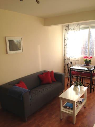 Well-located room in Madrid - Madrid - Leilighet