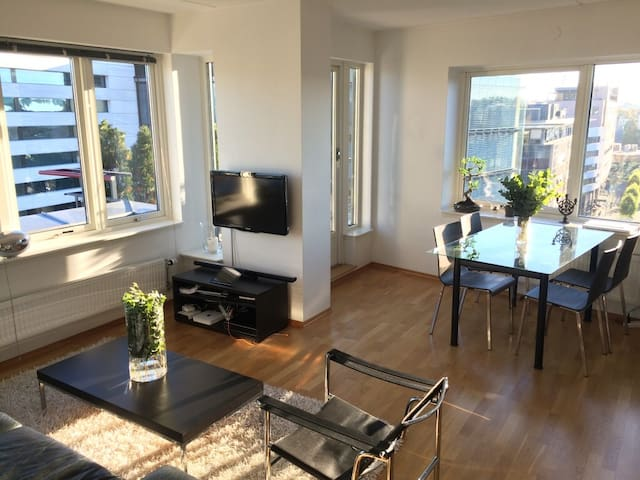 Beautiful apartment centrally located in Oslo