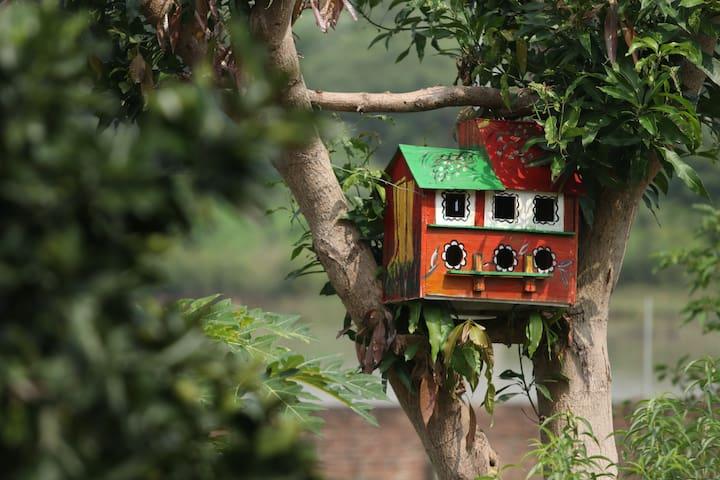 GreenHome organic farmstay - 40 min from Hanoi