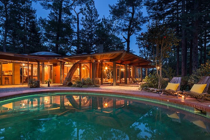 Midcentury Architectural Masterpiece in Redwoods - Mill Valley - Casa