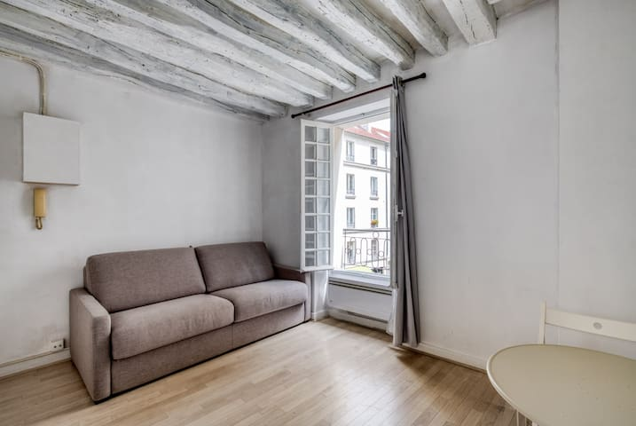 RENOVATED & COMFORTED STUDIO WITH THE GARDEN OF PLANTS - PARIS 5e